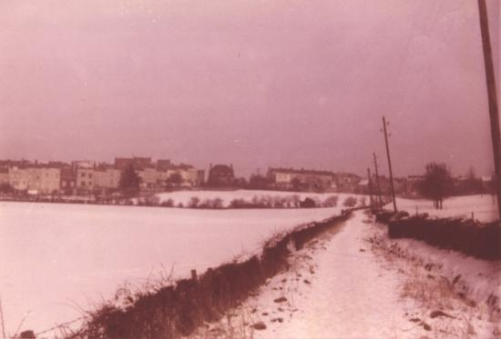 Avenue-Jean-Lambert-vue-du-dessous-2.jpg