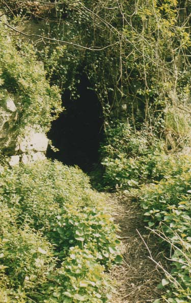 Grotte 35