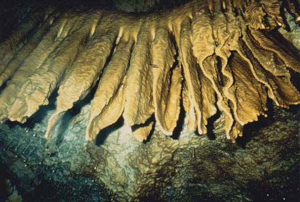 Grotte 61