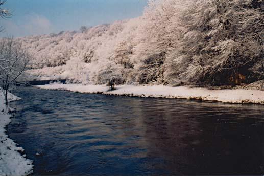 Paysage hivernal 02