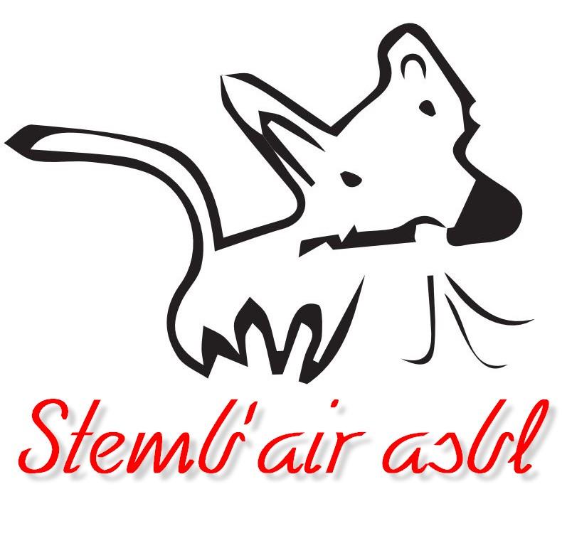 Stemb air 01