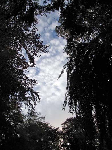 Trouee 02 vue du sol 1